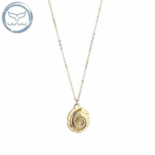 collier coquillage ammonite